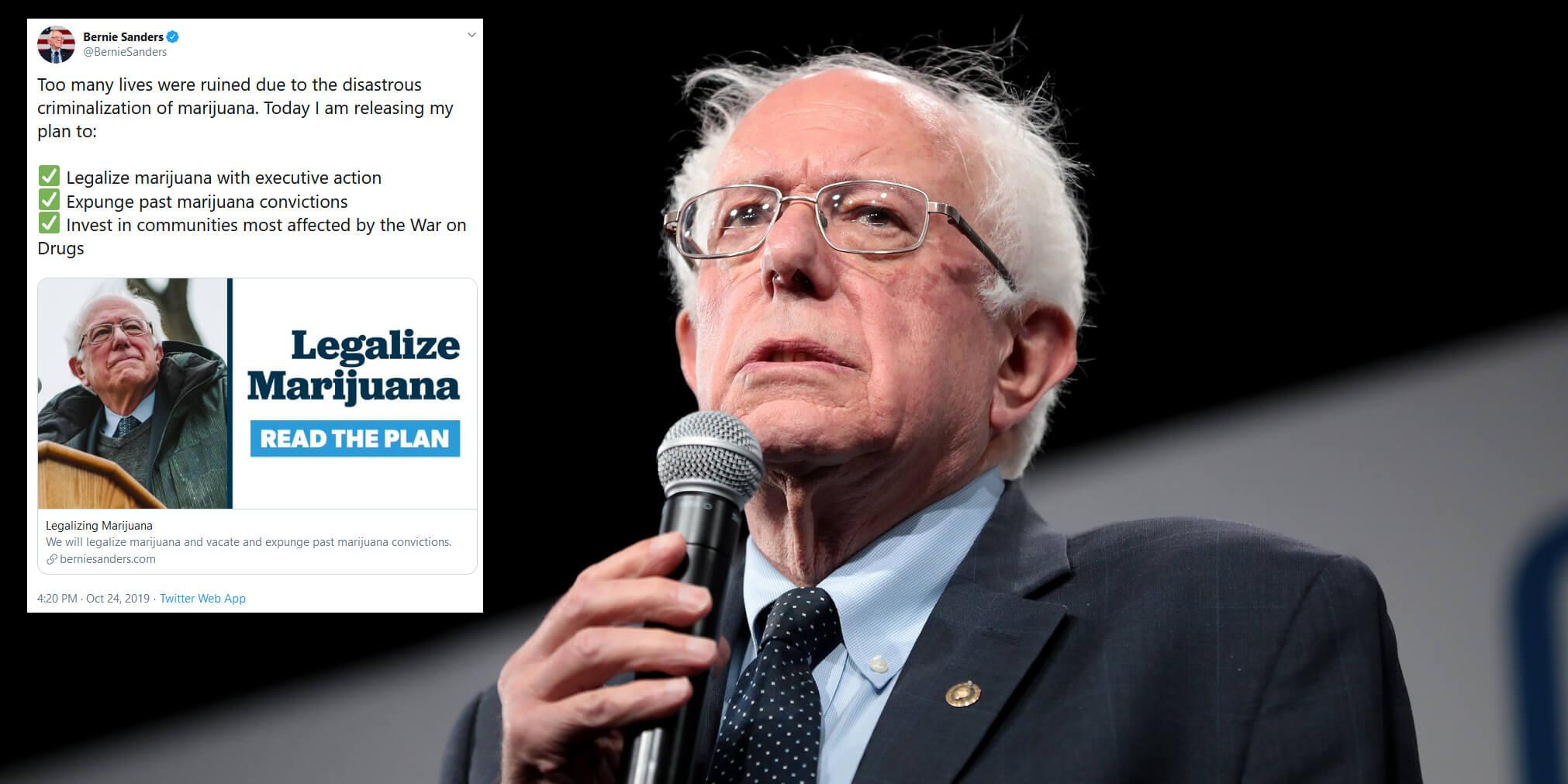 Bernie Sanders Plan to Roll-out Legalization of Marijuana