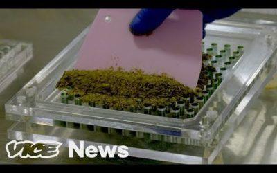 Is Micro-dosing The Future of Marijuana?