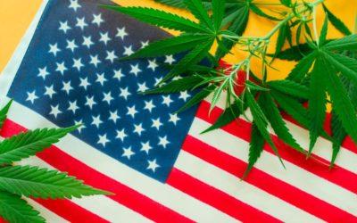 Coronavirus Impact on Marijuana Legalization