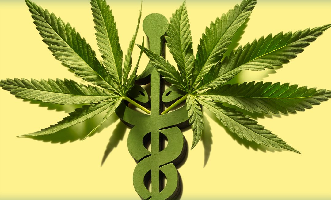 Medical Cannabis Basics