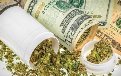 State Auditor Lays Out Staggering Math of Legal Cannabis