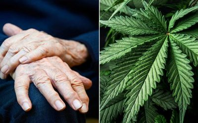 Medical Marijuana and Parkinsons