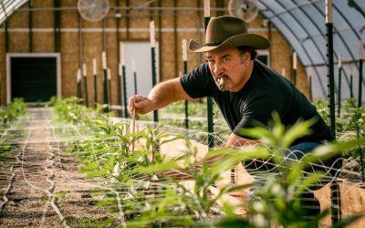 Jim Belushi: Cannabis Farmer