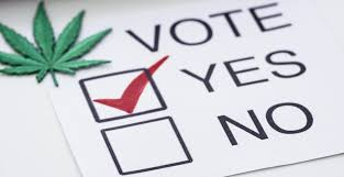 Marijuana Legalization Got More Votes Than Any Candidate In The USA