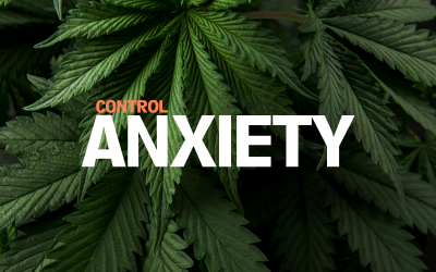 How To Use Cannabis For Anxiety Relief