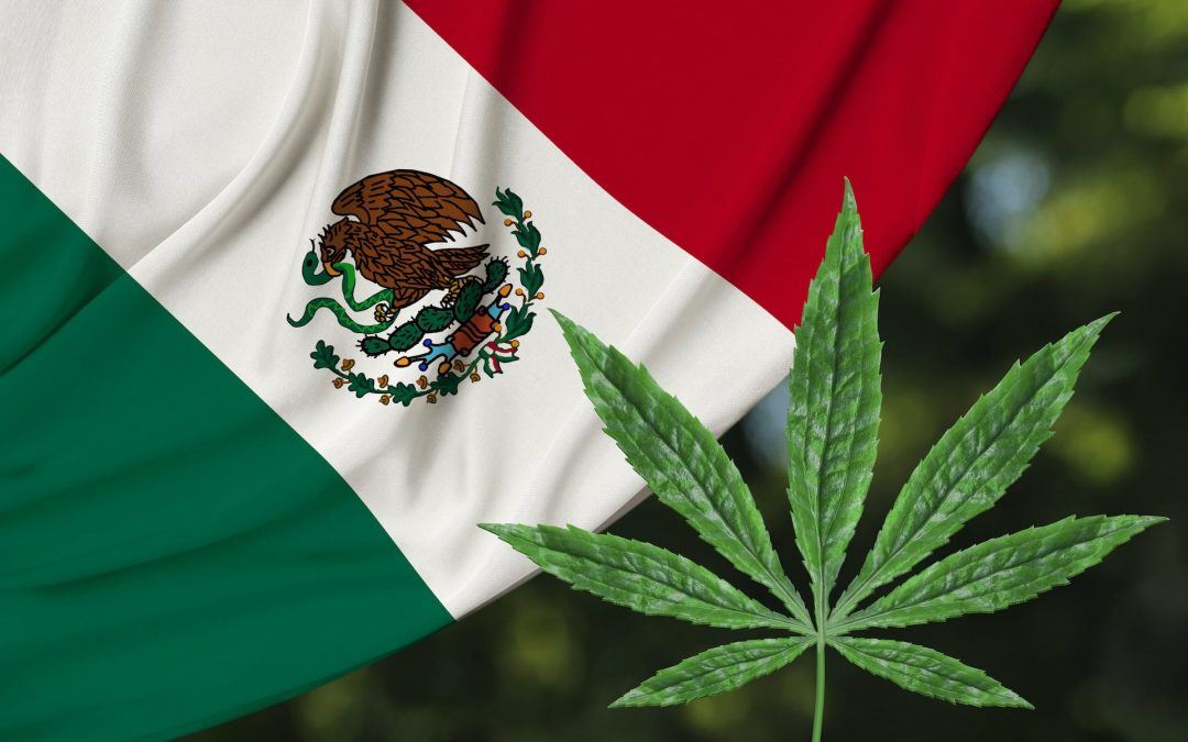 Mexico to Legalize Cannabis