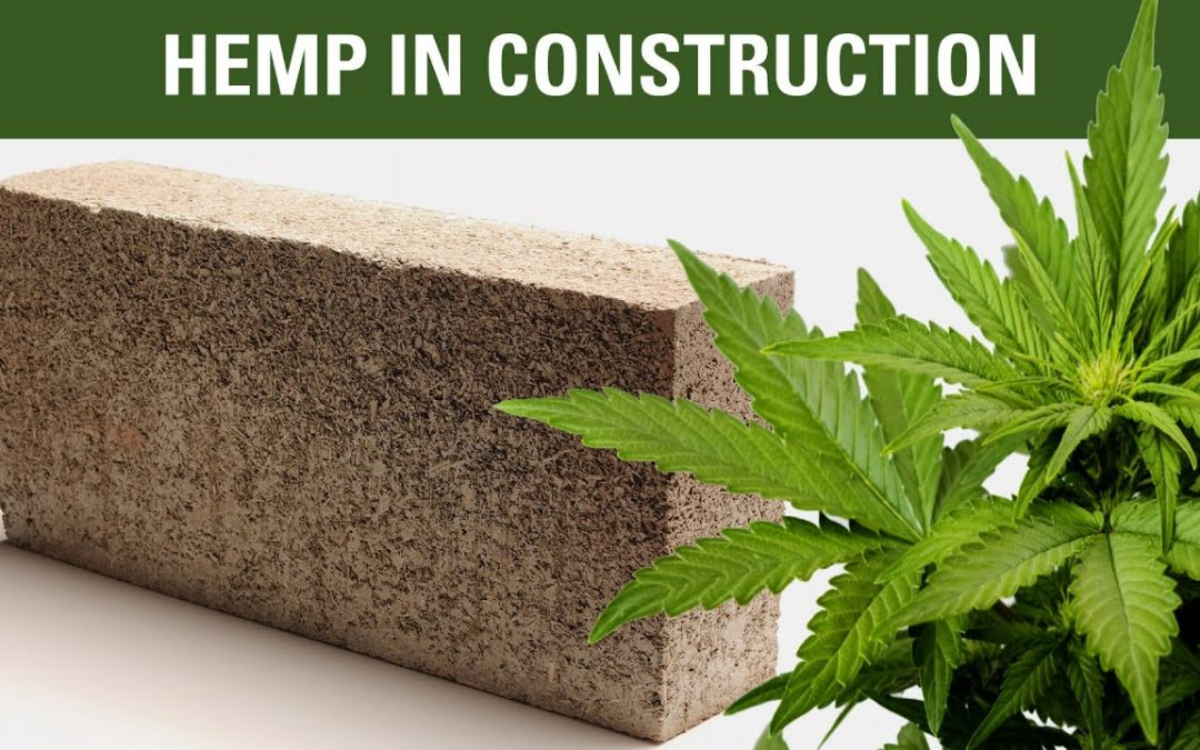 Industrial Hemp Based Bricks