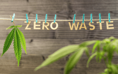 Ways To Make Cannabis More Eco Friendly