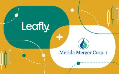Leafly Joining The Stock Market